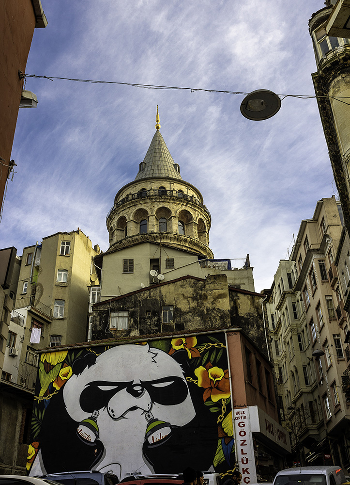 Galata Tower and panda